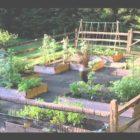 Kitchen Garden Ideas