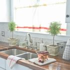 Ideas To Decorate Kitchen Countertops