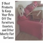 Products To Keep Pets Off Furniture
