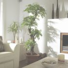 Decorative Trees For Living Room